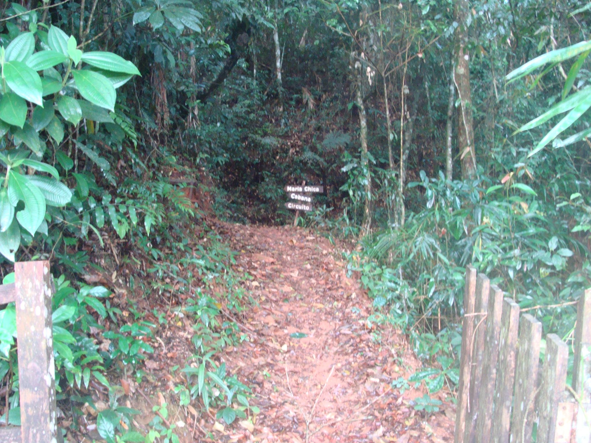 O trekking da Cabana fica localizado em Rio Bonito de Lumiar, dentro da  base operacional do Canopy arvorismo, podendo ser contratado a hospedagem  na pousada ... e9fef86568